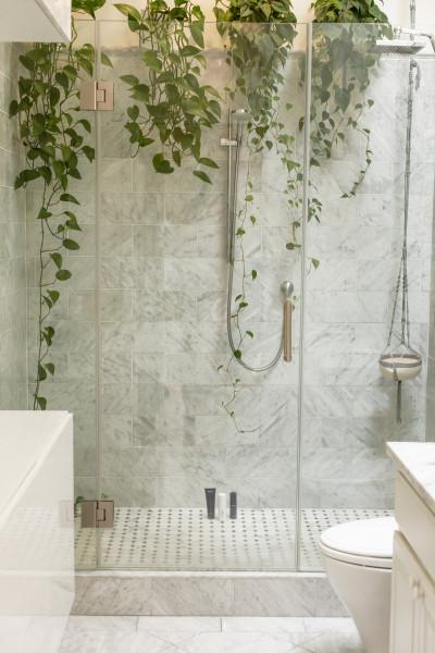 banheiro-vidro-portas-agua-limpeza-plantas-urban-jungle-chuveiro-box-parede