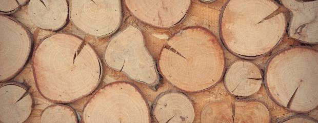 Como usar massa para madeira