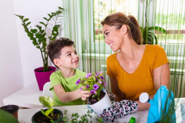 mãe-filho-plantas