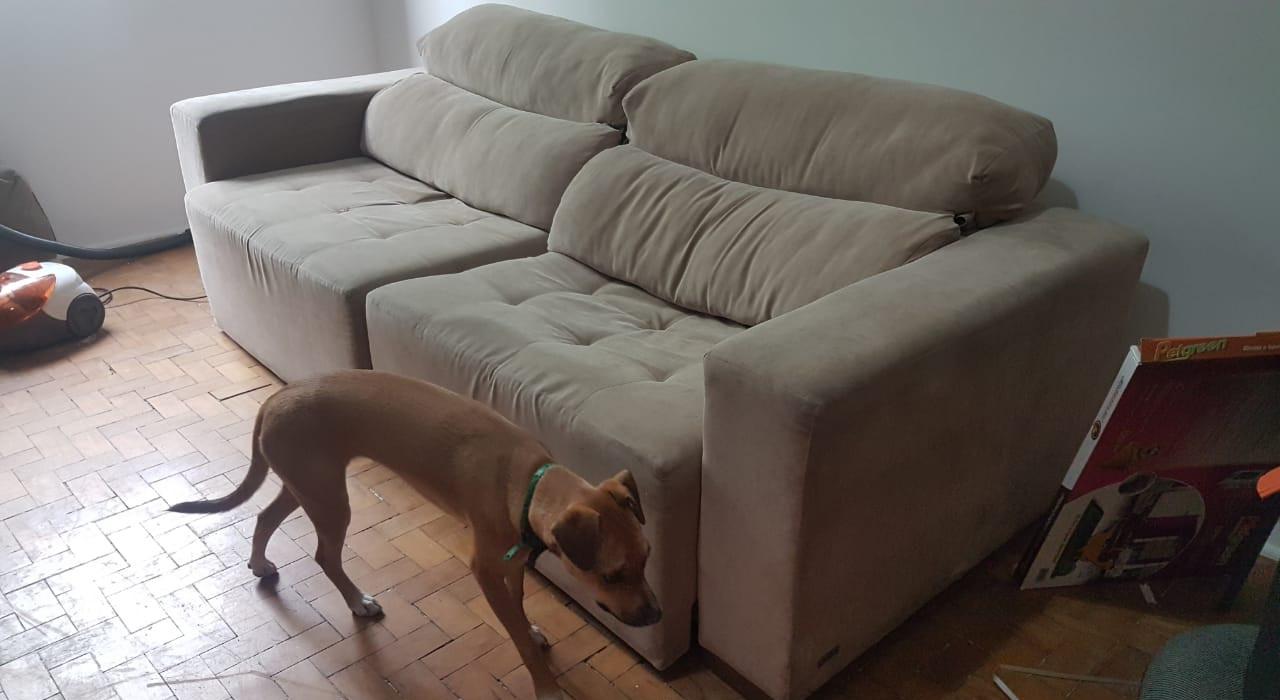 sofa-estragado-furado-arranhado-restaurar-trocar-capa-cachorro