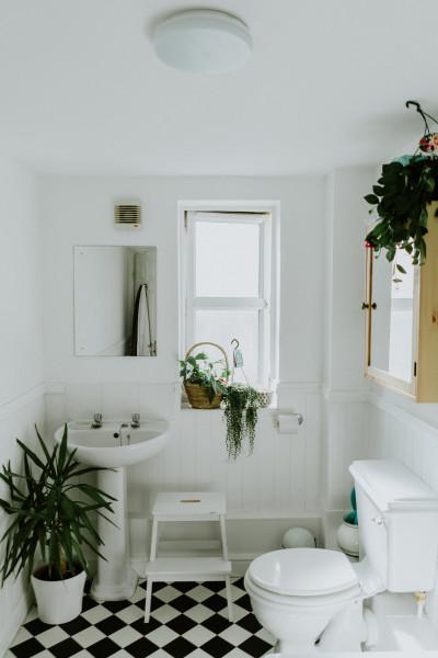 banheiro-lavabo-piso-parede-branco-preto-plantas-limpo-organizado-cheiroso-fresco-janela-iluminado