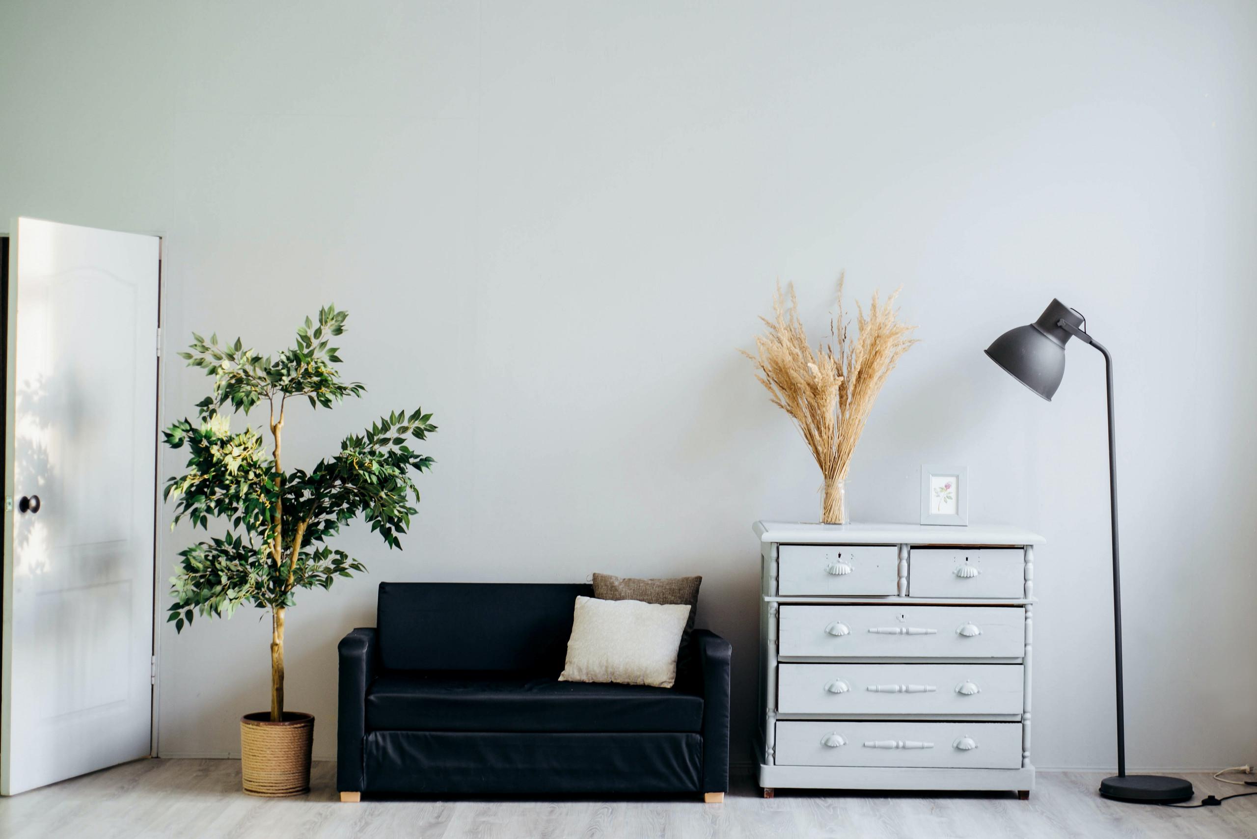 sala-decoração-plantas