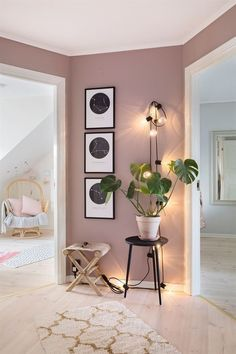 rosa-parede-planta-decor-decoracao-iluminacao-quadros-decorativos-tapete-corredor-casa-pantone-2022